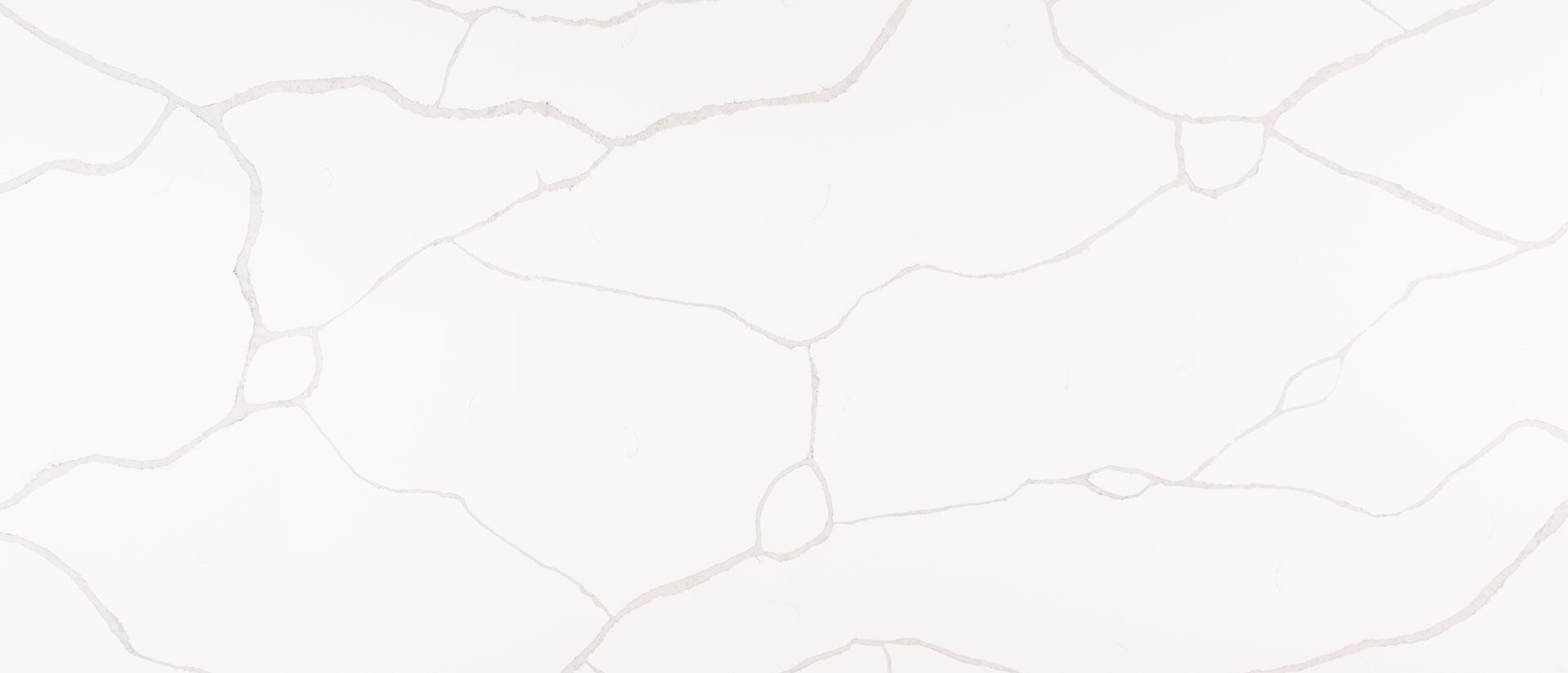 MSI Option: Calacatta Classique