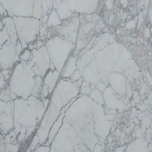 Calcutta Marble - Academy Marble
